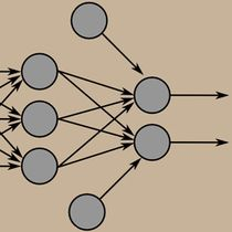 Circles and lines form a basic network analysis